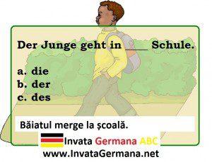 invata germana, limba germana, exrecitii germana, exercitii de limba germana, test germana, teste de limba germana, test germana b2, invata germana abc, acuzativ, dativ, acuzativ sau dativ